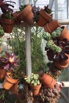 CactusWreath