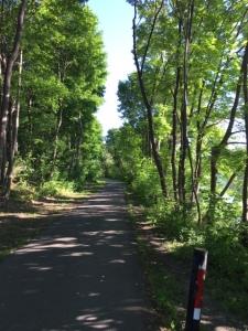 Walk-Rideau